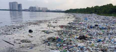 Cientistas desenvolvem plástico biodegradável que não usa água fresca ou plantas